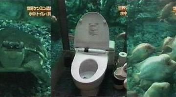 Japanese Underwater Toilet