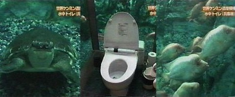 Japanese Underwater Toilet