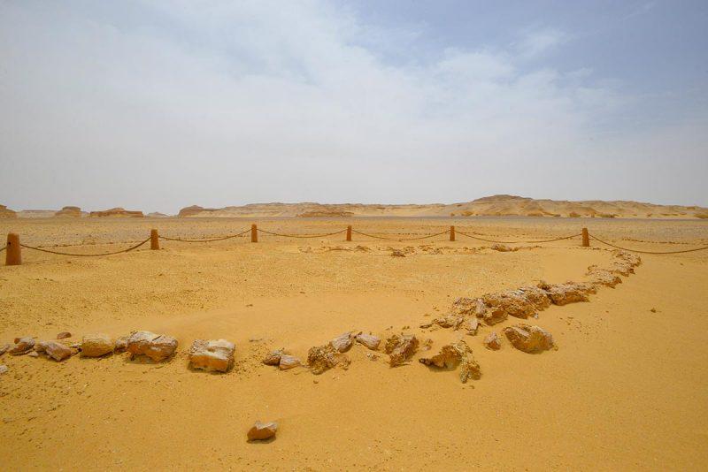 Egypt's Valley of the Whales (Wadi Al-Hitan)