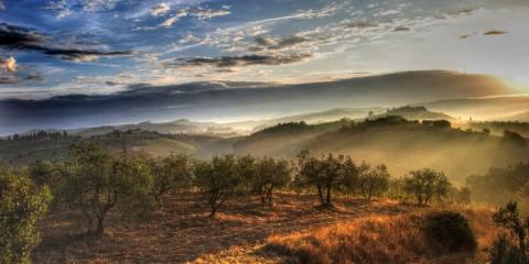 Visions of Tuscany, Italy