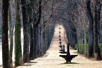 Waiting for Spring, Madrid