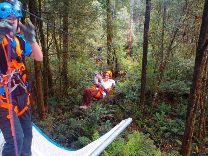 Ziplining, Australia